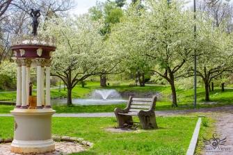 Blooming Time at Deer Park Spring