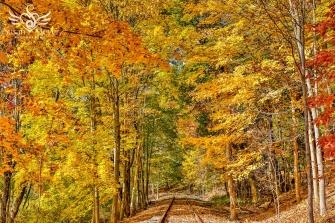 October-Railroad-Tracks-1