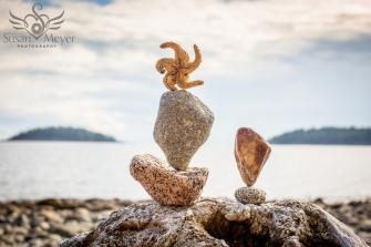 Starfish Rock Balance
