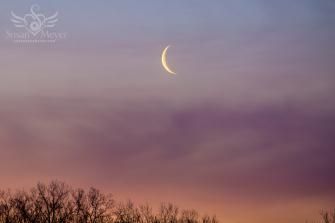 Sunrise-Waning-Moon