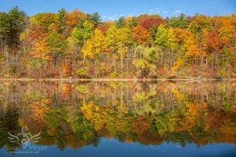Upper-Hudson-Autumn-Mirror-2