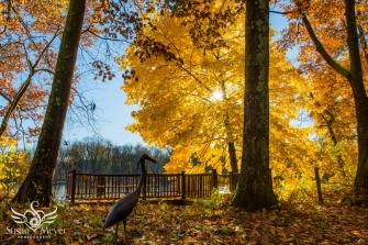 Heron Statue at Hudson Crossing Park