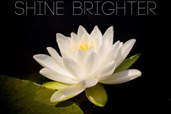 1_Shine-brighter