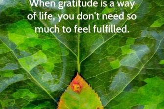 Awareness-of-beauty-cultivates-gratitude