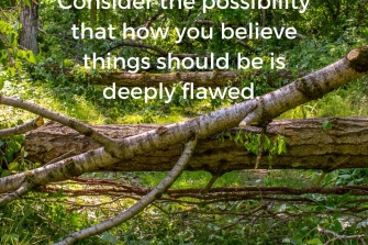 Consider-the-possibility-that-how-you-believe-things-should-be