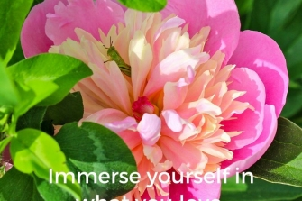 Immerse-yourself-in-what-you-love