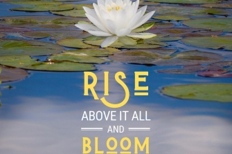 Rise-above-it-all-and-bloom