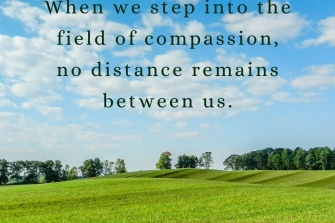 When-we-step-into-the-field-of-compassion