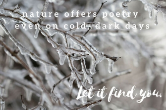 Nature Offers Poetry