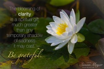 The Blooming of Clarity
