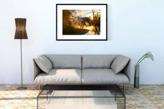 1_Living-Room-Milkweed