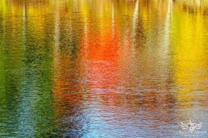 Autumn Toned River