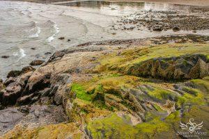 Marblehead Coast