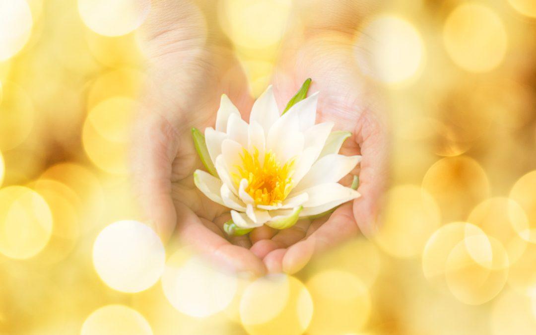 The Stream of Lovingkindness